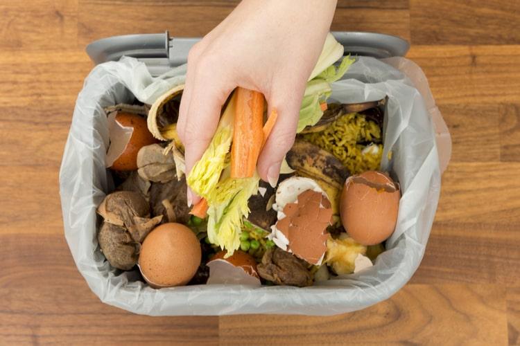The 25 Best Indoor Compost Bins Of 2020